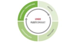 Chart zum Ablauf von Life Fleet Consult
